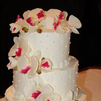 Reception, Flowers & Decor, Cakes, white, pink, cake, Wedding, Orchids, Elegant, Dots, Sugar on top