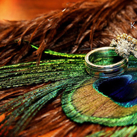 Beauty, Jewelry, orange, blue, green, brown, gold, Engagement Rings, Feathers, Rings, Wedding, Ring, Peacock, Shots, K s photo