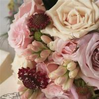Flowers & Decor, white, pink, Flowers, Floral, The royal gala