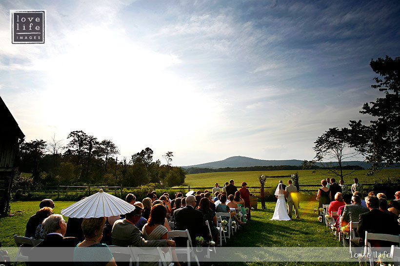 Ceremony, Reception, Flowers & Decor, white, yellow, blue, green, gold, Outdoor, Farm, Mountain, Fields, The comus inn