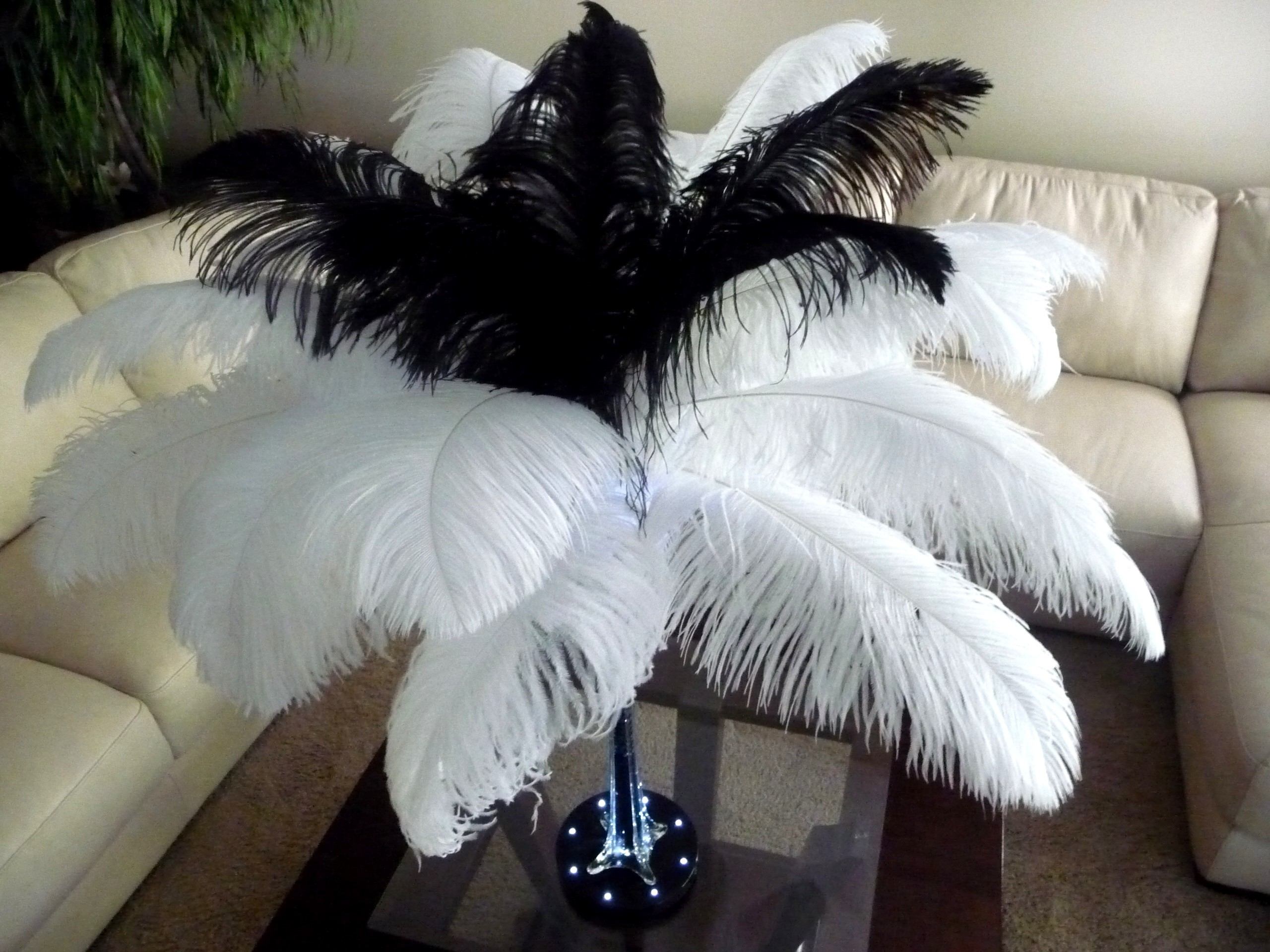 Beauty, Ceremony, Inspiration, Reception, Flowers & Decor, white, black, Feathers, Ceremony Flowers, Centerpieces, Flowers, Board, Feather, Ostrich, Savannah event decor