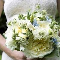 Flowers & Decor, blue, green, Bride Bouquets, Flowers, Bouquet