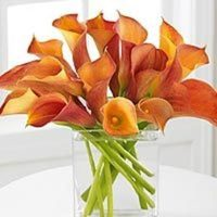 Flowers & Decor, orange, Bride Bouquets, Flowers, Bouquet, Calla, Lilies, Mango