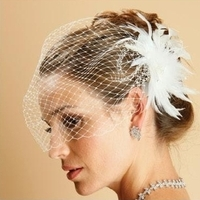 Beauty, Veils, Fashion, white, Feathers, Accessories, Veil, Wedding, Hair, Bridal, Birdcage, Fascinator, Feather, Myweddingaccentscom, Feather Wedding Dresses