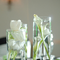 Reception, Flowers & Decor, green, black, Centerpieces, Centerpiece, Elite events event design coordination