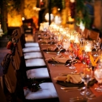 Reception, Flowers & Decor, orange, brown, gold, Wedding, Romantic, Candle, Table, Runner, Copper, Bronze, Intimate, Lamour, Lit, Art soul weddings and events, Parakeets