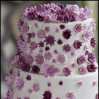 Cakes, white, pink, cake, Jay davis photography