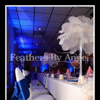 Beauty, Ceremony, Reception, Flowers & Decor, Feathers, Ceremony Flowers, Centerpieces, Feather, Ostrich, Feathers by angel