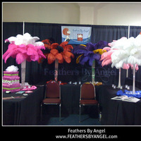 Beauty, Ceremony, Reception, Flowers & Decor, Feathers, Ceremony Flowers, Centerpieces, Centerpiece, Feather, Ostrich, Feathers by angel
