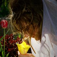 Flowers & Decor, Bride Bouquets, Bride, Flowers, With
