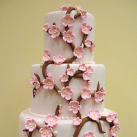 Flowers & Decor, Cakes, white, pink, brown, cake, Flowers, Blossoms, Sweet icing bakeshop