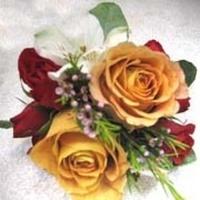 Flowers & Decor, white, orange, pink, red, Flowers, Flower, Girl, Macklin floral designs