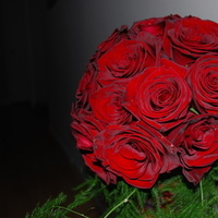 Ceremony, Flowers & Decor, red, green, black, Ceremony Flowers, Flowers, Flowers by helen