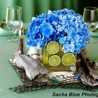 Reception, Flowers & Decor, blue, green, Flowers, Wedding, Hydrangea, Limes, Designs by courtney