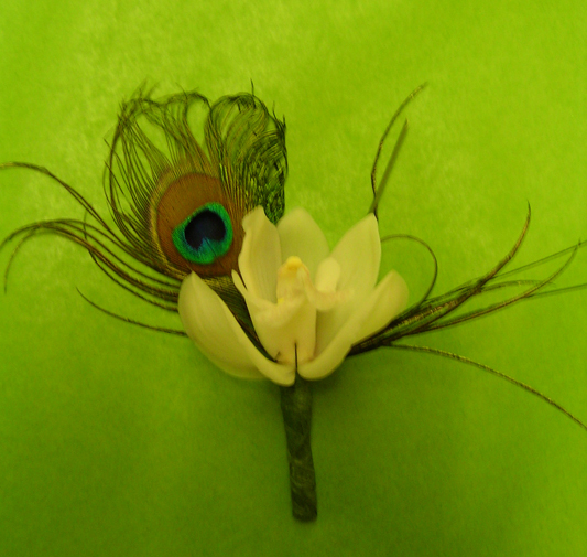 Boutonniere, Peacock orchid