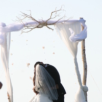 Ceremony, Reception, Flowers & Decor, white, Ceremony Flowers, Flowers, Arch, Chuppah, Canopy