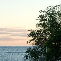 Ceremony, Reception, Flowers & Decor, blue, green, Olowalu beach house