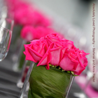Reception, Flowers & Decor, Photography, pink, red, green, black, Flowers, Roses, And, Anna, Stefanie, Riedel, Loved, Absolutely