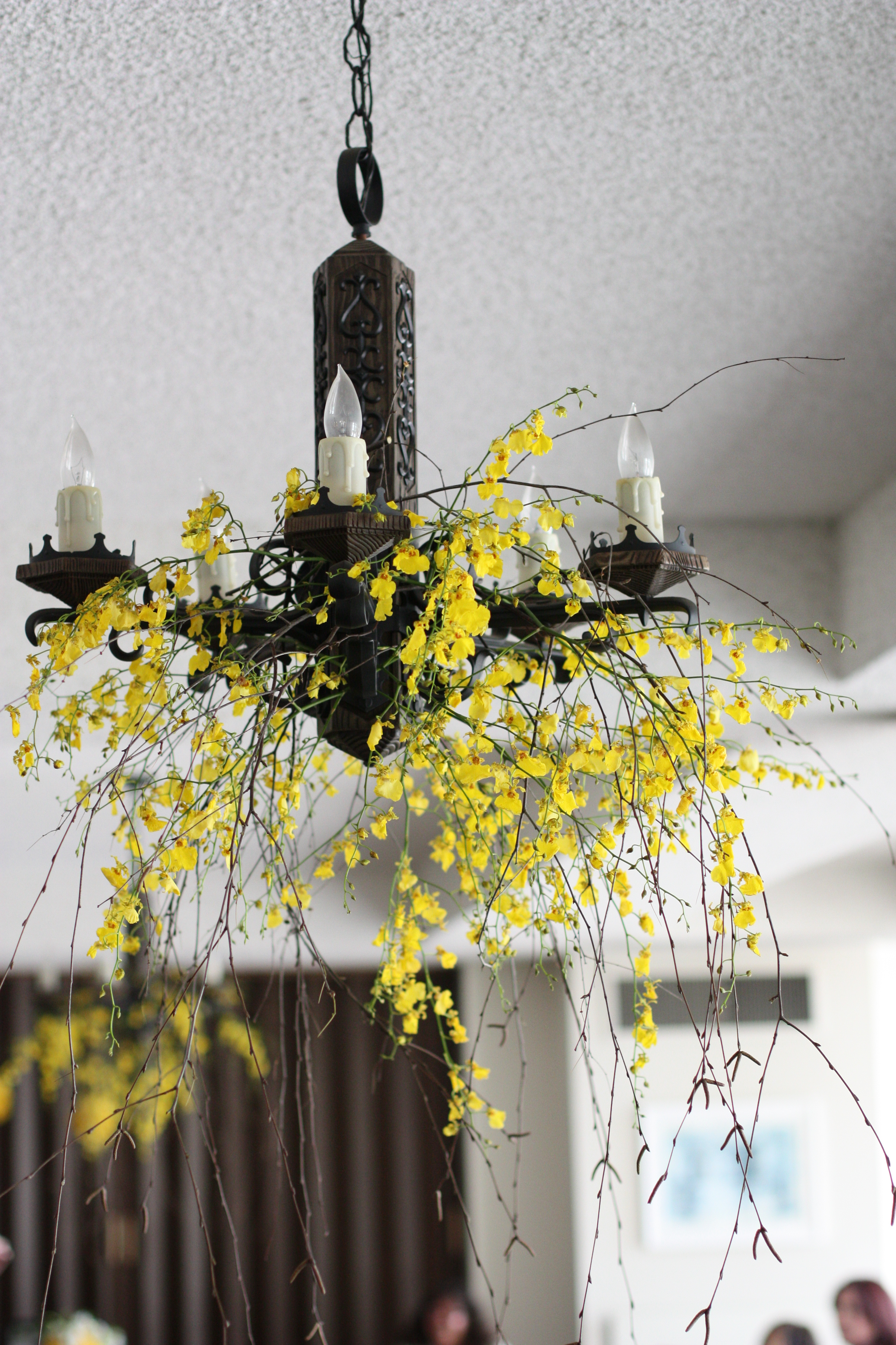 Flowers & Decor, yellow, Flowers, Orchids, Hanging, Gothic, Entwined design, Oncidium, Chandlier