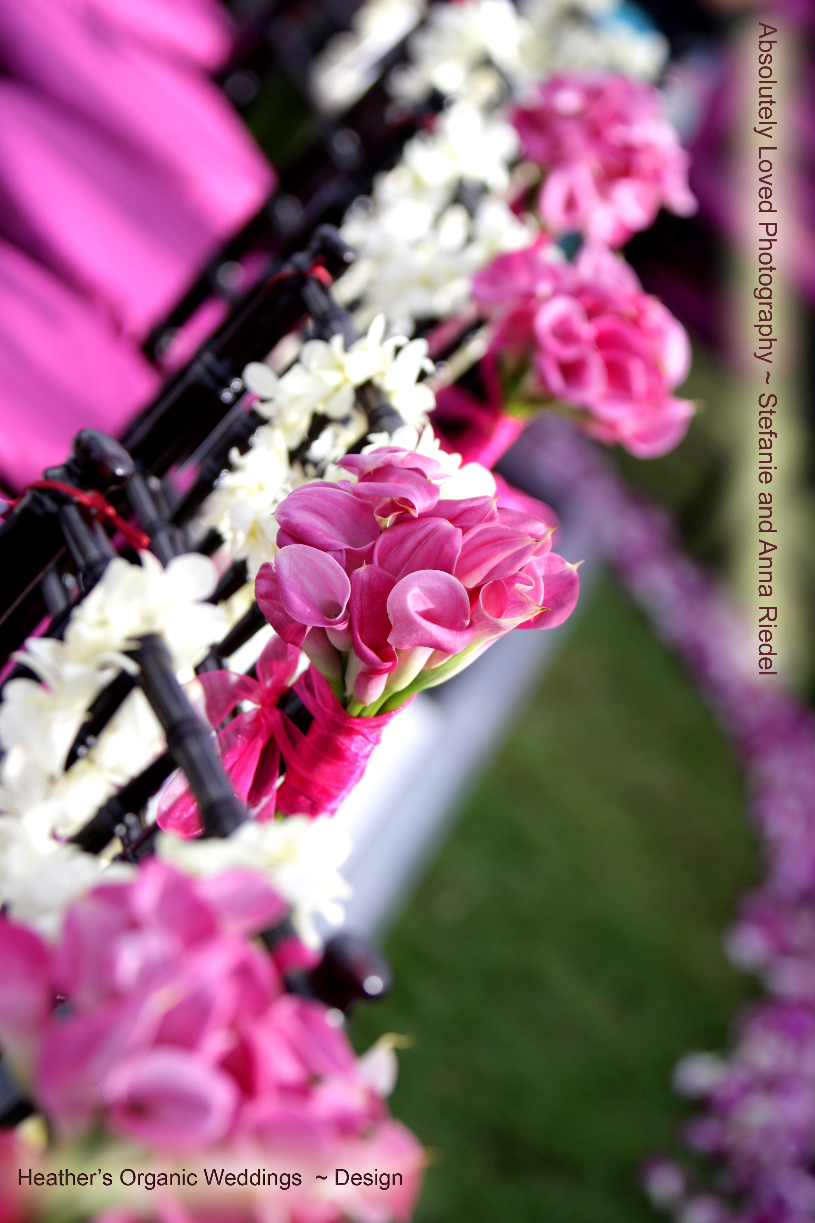 Ceremony, Reception, Flowers & Decor, Photography, pink, red, black, And, Anna, 808, Stefanie, Riedel, Wwwabsolutelylovedcom, Loved, Absolutely, 779, 1895
