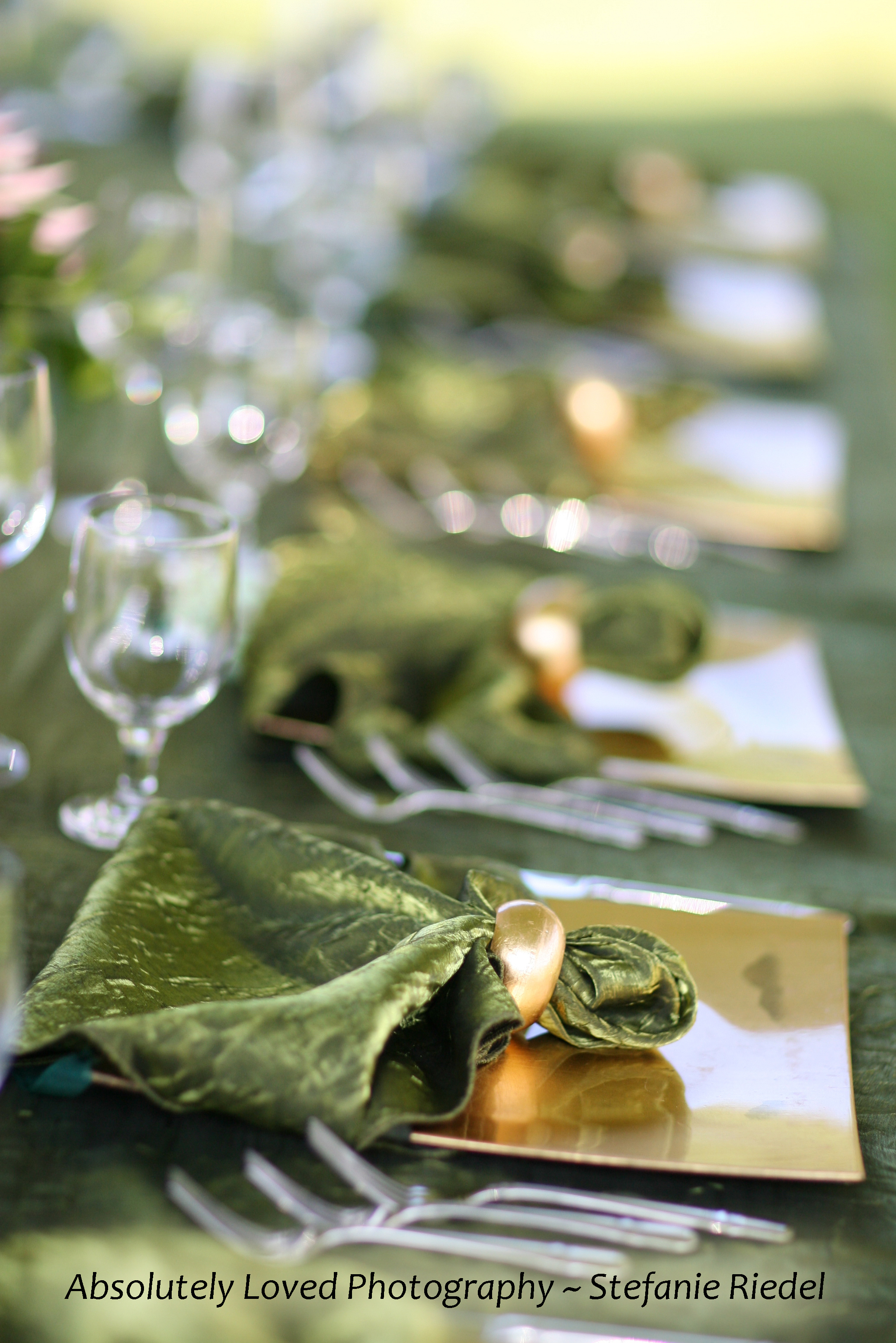 Reception, Flowers & Decor, Photography, green, gold, And, Anna, 808, Stefanie, Riedel, Wwwabsolutelylovedcom, Loved, Absolutely, 779, 1895