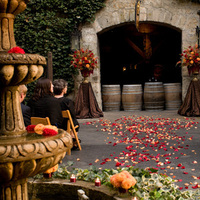 Ceremony, Flowers & Decor, orange, red, Ceremony Flowers, Aisle Decor, Flowers, Roses, Fountain, Petals, Aisle, Dahlias, The blue orchid, Urn
