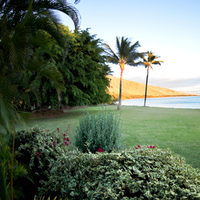 Destinations, venue, Hawaii, Beach, Wedding, Destination, Location, Weddings, Maui