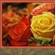 1375069499_small_thumb_d4370e25071d631e5e356758467b8e26