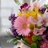 Flowers & Decor, white, yellow, orange, pink, purple, green, Bride Bouquets, Flowers, Bouquet, Bridal, Tropicals