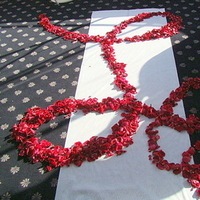 Ceremony, Flowers & Decor, red, Ceremony Flowers, Aisle Decor, Flowers, Petals, Aisle, Pixies petals event decor