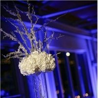Reception, Flowers & Decor, white, Winter, Flowers, Branch, Snow