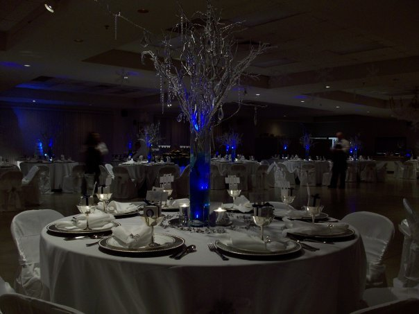 Reception, Flowers & Decor, white, blue, silver, Centerpieces, Winter, Curly, Manzanita, Snowflakes, Willow, Wonderland