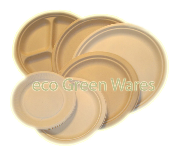 Registry, green, Place Settings, Plates, Cups, Bowls, Sugarcane, Eco greenwares - biodegradable foodservice products