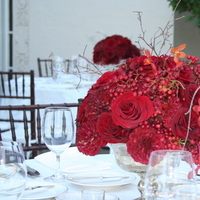 Flowers & Decor, Centerpieces, Flowers, Centerpiece, Thistledown designs
