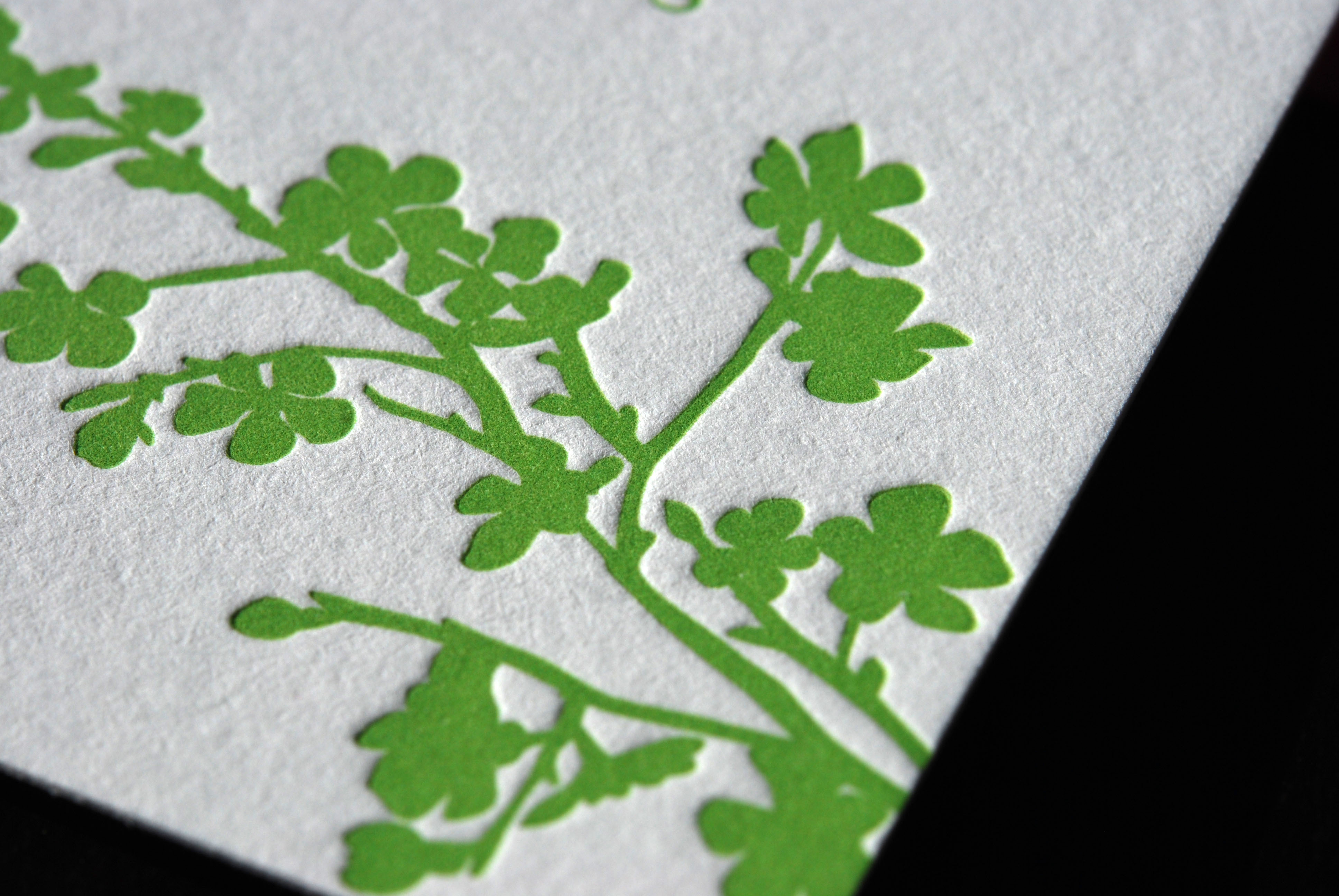 Stationery, pink, green, invitation, Invitations, Bird, Blossom, Branch, Cherry, Letterpress, Apple, The aerialist press