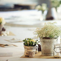 Reception, Flowers & Decor, white, green, Centerpieces, Flowers, Centerpiece