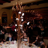 Reception, Flowers & Decor, white, pink, brown, Centerpieces, Flowers, Branches, Orchids