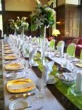 green, brown, Watkins event decor