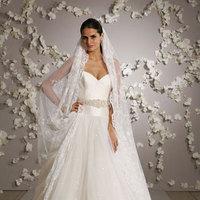 Wedding Dresses, Veils, Ball Gown Wedding Dresses, Lace Wedding Dresses, Fashion, white, dress, Veil, Lace, Ballgown, Belt, Lazaro, Volles bridal and boutique