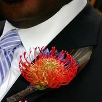 Flowers & Decor, orange, purple, Boutonnieres, Flowers, Boutonniere, Fujikos flowers, Pin cushion