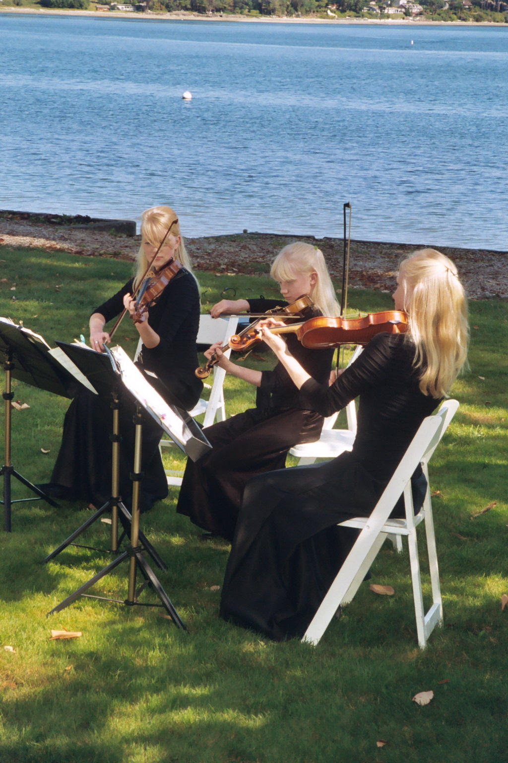 Ceremony, Reception, Flowers & Decor, Outdoor, Wedding, Music, The, Island, Quartet, Sisters, Classical, Poulsbo, Three, Trio, String, wa, Gothard, Violins