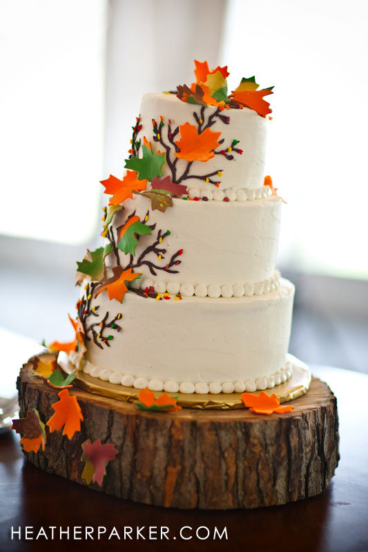 Cakes, white, yellow, orange, red, green, brown, gold, cake, Travelers cafe wedding cakes