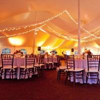 Reception, Flowers & Decor, Lighting, Tent