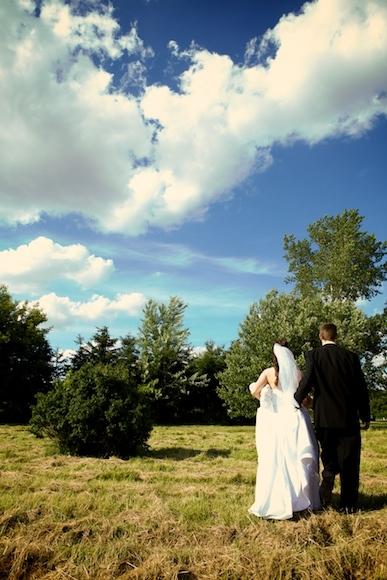 white, yellow, black, Bride, Groom, Formal, Sky, Field, Josh ohms photography