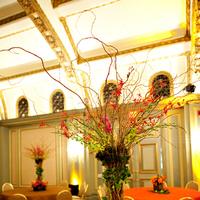 Flowers & Decor, Centerpieces, Flowers, Flower, Centerpiece, Phan photography