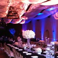 Reception, Flowers & Decor, white, Centerpieces, Flowers, Centerpiece, Party, Shirvan design - haute events and florals