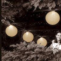 Reception, Flowers & Decor, Lighting, Lanterns