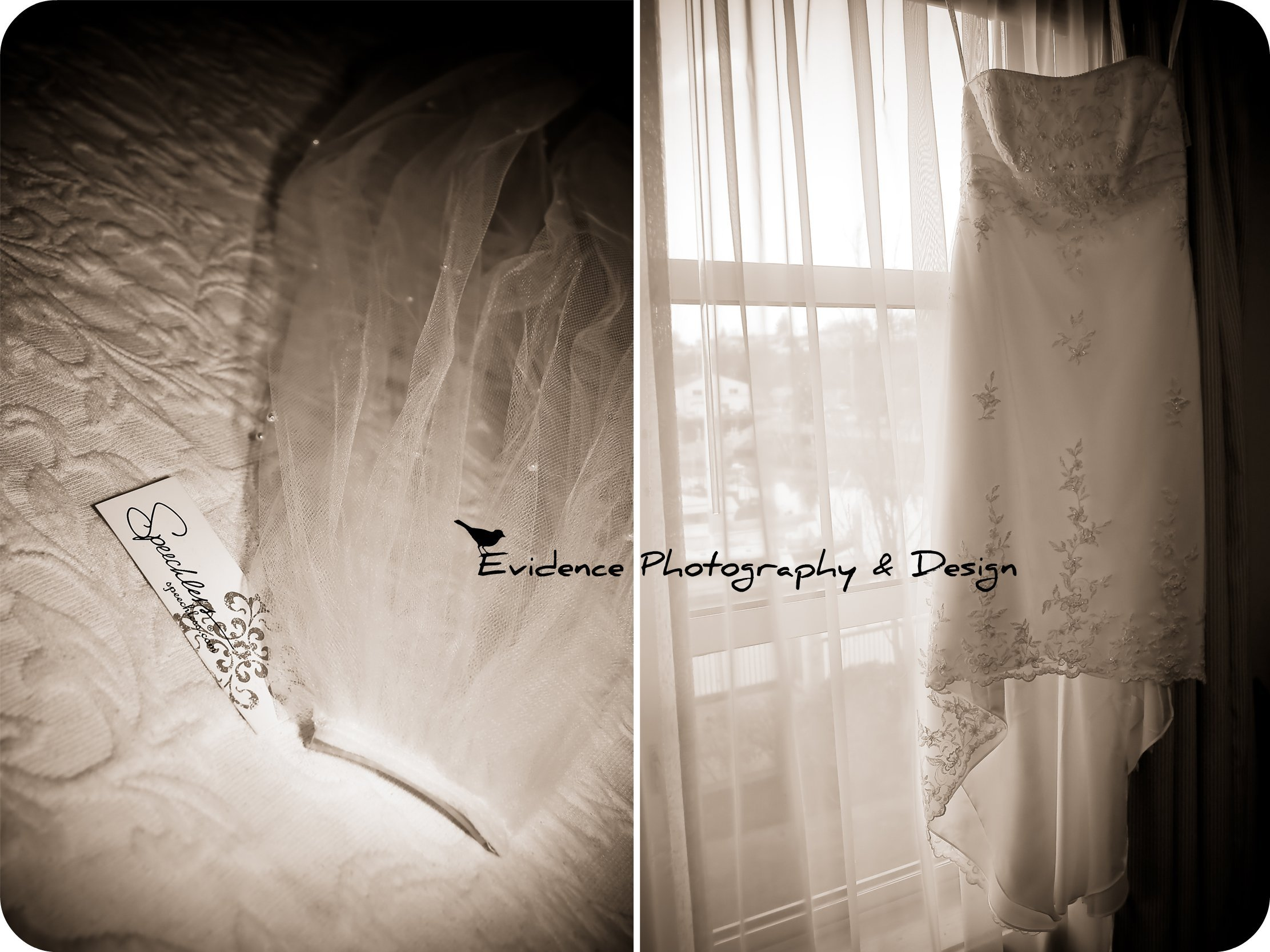Wedding Dresses, Veils, Photography, Fashion, white, dress, Veil, Wedding, Headpiece, Evidence photography and design, Sepia
