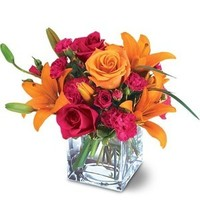 Flowers & Decor, orange, pink, green, Flowers