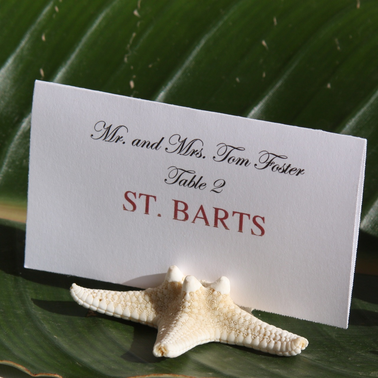 Stationery, Escort Cards, Cards, Escort, Starfish, For, Card, Place, Holder